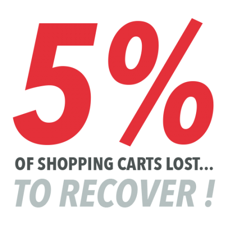 5% of shopping carts lost… to recover!